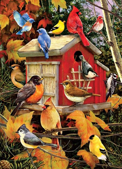 Πολύχρωμα πουλιά - Τα ζώα. Πολύχρωμα πουλιά (8×9)