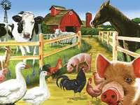 Malovaná zvířata.