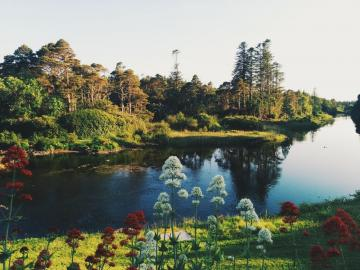 Ballynahinch Castle Hotel, Recess, Ireland - Lake, nature, trees and flowers. Landscape, Ireland.