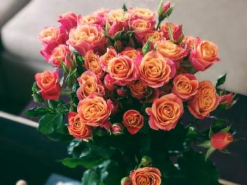Teerosen - Tee, rosa und orange Rosen