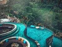 Krajobraz Bali - Kurort w dżungli, basen, palmy, wypoczynek