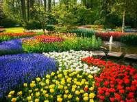 Κήπος λουλουδιών. - Ανθοπωλείο το μεσημέρι.