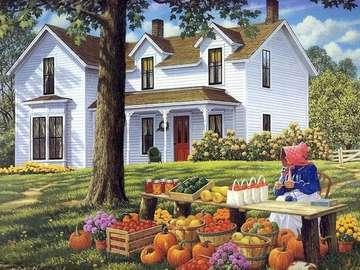 Rolnicze klimaty. - Rolnictwo. Krajobraz wiejski.