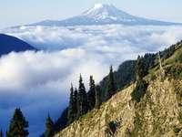 Mount Adams, Washington, Verenigde Staten - Panorama. Mount Adams, Washington, Verenigde Staten. Vulkaan in het oostelijke deel van de Cascade M