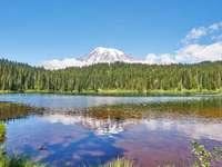 Muntele Rainier, Washington, Statele Unite