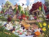 Barevný obrázek. - Květiny u rybníka. Puzzle. Barevný obrázek. Puzzle: květiny u rybníka.