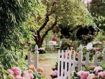 Kwiatowa ścieżka w ogródku - Różowe kwiaty w ogródku, ścieżka