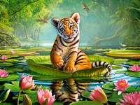 Тигъра.