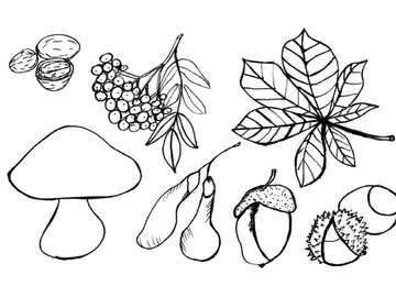 AUTUMN TREASURES - Puzzle for children depicting the treasures of autumn.