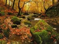 Automne dans la forêt. - Puzzle: l'automne dans la forêt. Casse-tête très difficile. Puzzle difficile.