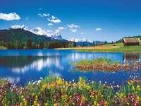 Планински пейзаж. -  Планински пейзаж.