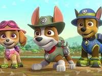 Psi Patrol - Psi Patrol - zestaw trzeci