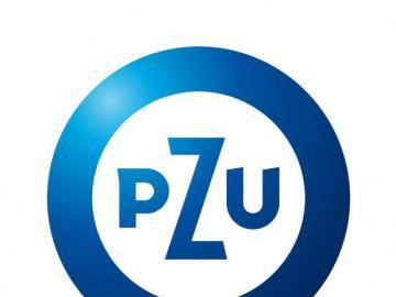 PZU puzle - PZU puzle na prezenacje