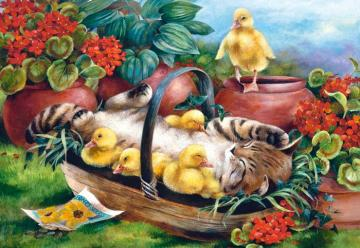 Kitty and ducklings. - Puzzle: kitty and ducklings.