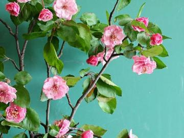 Hermosas flores de color rosa - Decoración floral, flores rosas