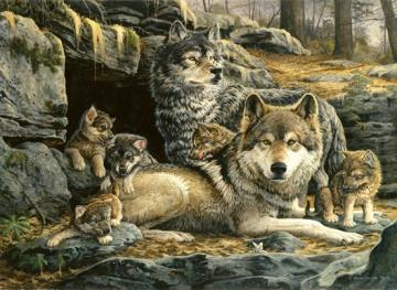 Gray wolves. - Puzzle: Gray Wolves.