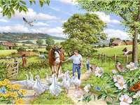 Ländliche Landschaft - ländlich ländlich ländliche Landschaft Ländliche Landschaft mit einer Herde von Tieren Ländlich