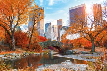 Park in New York - Puzzle Landschaften. Natur in New York, Online-Puzzle.