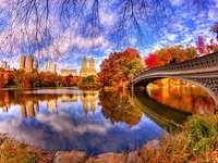 Centro de Manhattan Park, em Nova York - Convido você a decifrar paisagens. O Central Park é uma enorme área arborizada no centro de Manha