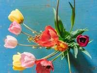 Bunte Tulpen auf dem Tisch