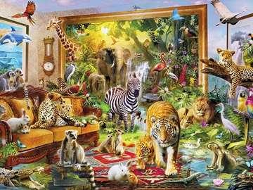 Diversità animale - Diversità animale