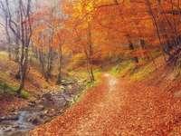 Ungarischer Herbst. - Puzzle: Ungarischer Herbst.