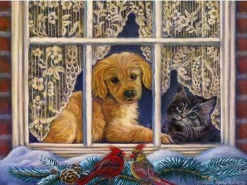 Tiere. - Animals in the window
