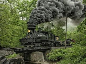 Nature lovers - Locomotive in the woods, shot on the bend