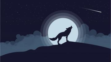 The wolf howls at the moon: 3 shorter version - Wolf. The wolf howls The wolf howls at the moon.