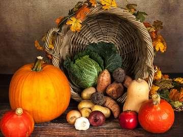 Autumn vegetables - Autumn vegetables are pumpkin, sweet potatoes