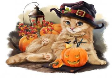 Imperfect wizard - Kitty in a hat by the pumpkin thinks about mice