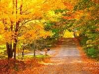 Ένα υπέροχο φθινόπωρο