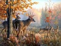 Ένα κοπάδι ελαφιών στο δάσος - Όμορφο τοπίο, ελάφια στο δάσος. Τοπία παζλ