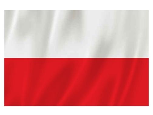 żłobek flaga polski