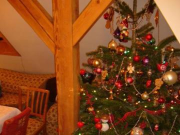 Christmas Eve on Boyja - nice Christmas tree on joint Christmas Eve