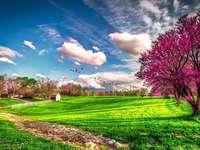Geweldig landschap - Kleurrijk landschap dat in meerdere stukken kan worden gevouwen