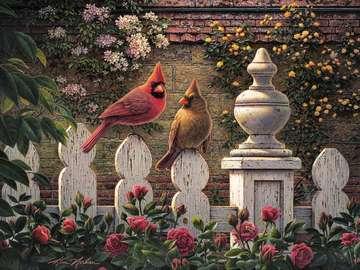Ptaki Kardynały. - Układanka. Zwierzęta. Ptaki. Układanka. Kolorowe róże. Kolorowe róże.