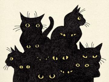 Czarodziejskie koty - Co klikanaście kotków,to nie jeden