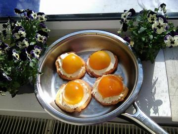 Ungewöhnliches Gericht - Like fried eggs