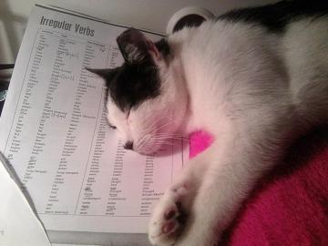 Englisch lernen - Lernen kann sehr anstrengend sein.