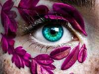 visão colorida