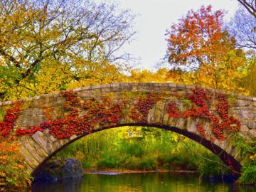 Stone bridge. - Stone bridge in Central Park.