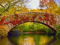 Stone bridge. - Stone bridge in Central Park.