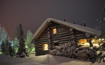 Wooden house - A charming house among forest trees