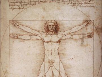 Vitruvianischer Mann - Zeichnung, die die menschliche Figur in einem Quadrat und in einem Kreis einschließt