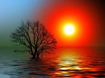 Sunset - Sunset - photo from pixabay.com (CC license)