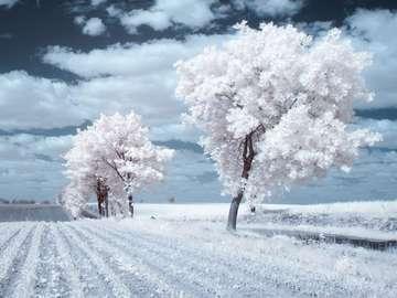 Harter Winter - Landschaft. Harter Winter.