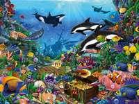 Animais do oceano.