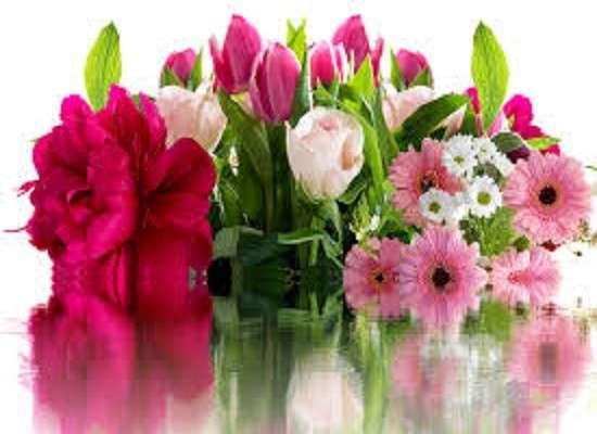 Kwiaty - Kwiaty urodzinowe (11×11)
