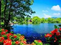 natureza paisagem